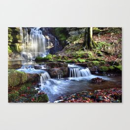 Scaleber Foss Waterfall Canvas Print
