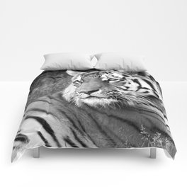 Wildlife Collection: Tiger Comforters