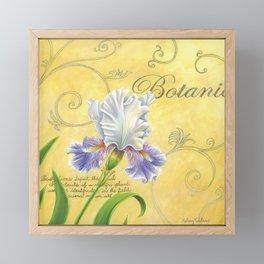 Purple and White Iris Framed Mini Art Print