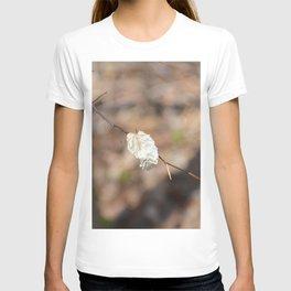 lone leaf T-shirt