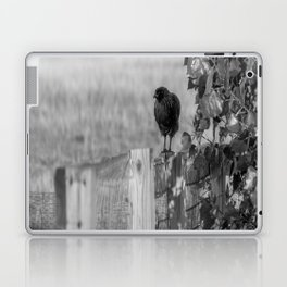 Walk the Line B&W Laptop & iPad Skin