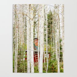 Red hut in forest Poster