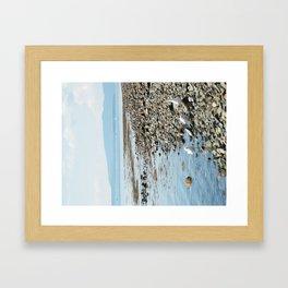 Seagull Landscape Framed Art Print