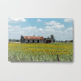 House in the middle of the sunflowers Metal Print