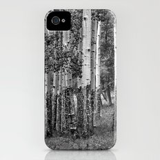 Summer Aspen Stand in Black and White iPhone (4, 4s) Slim Case