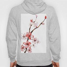 Cherry blossom 2 Hoody
