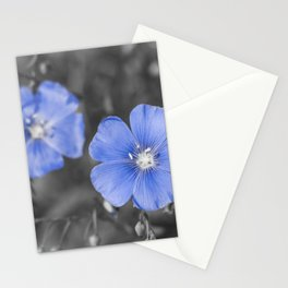 Gentle Blue Flower Stationery Cards