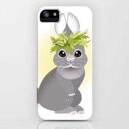 Monte Lei' po'o iPhone Case