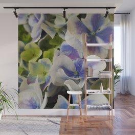 Hydrangea in Blue 3 - Close Up Like Butterflies Wall Mural