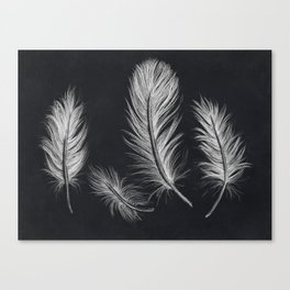 Chalk feather collection Canvas Print