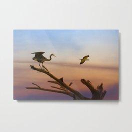 Heron And Osprey At Sunset Metal Print