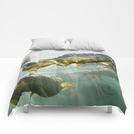 Trout Comforters