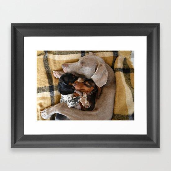 Cuddle Buddies Framed Art Print