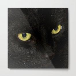 Yellow Eyes Metal Print