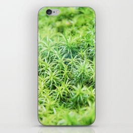Forest of moss iPhone Skin