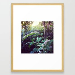 Toad Lily Fairy Garden Framed Art Print