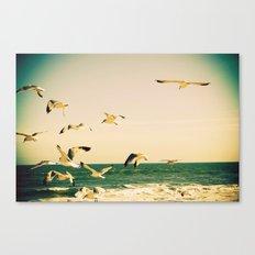 Gulls Series 1 Canvas Print