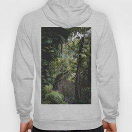 Hidden Jungle River Hoody