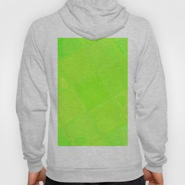 Re-Created Mirrored SQ LXXXIX by Robert S. Lee Hoody
