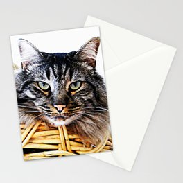 Don't laught at me! Stationery Cards