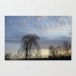 Willow on the Horizon Canvas Print