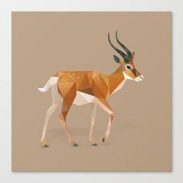 Gazelle. Canvas Print