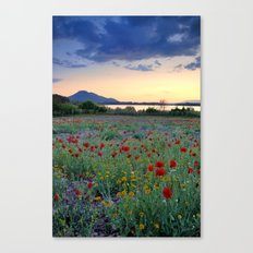 Red Poppies. Sunset at the lake Canvas Print