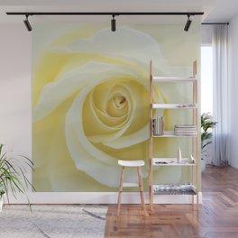 Beautiful Yellow Rose Wall Mural