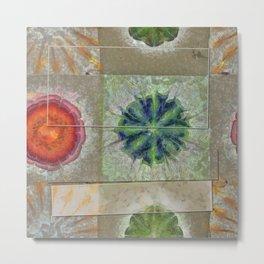 Baculum Concord Flower  ID:16165-040029-30001 Metal Print