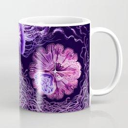 Ernst Haeckel Discomedusae Plate 8 Coffee Mug