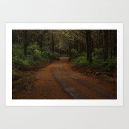 Finer Forestry Art Print