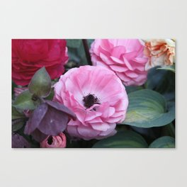 The Softest Pink Canvas Print