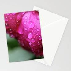 Rain Drops on Roses Stationery Cards