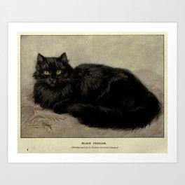 Vintage Painting of a Black Cat (1903) Art Print