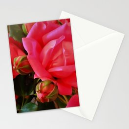 Pink Roses WC 2 Stationery Cards