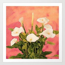 Monterey Calla Lilies Art Print