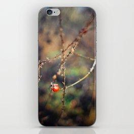brier iPhone Skin
