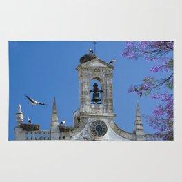 Arco da Vila, Faro 2 Rug