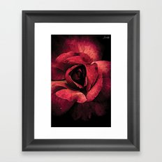Rose ouverte colors fashion Jacob's Paris Framed Art Print
