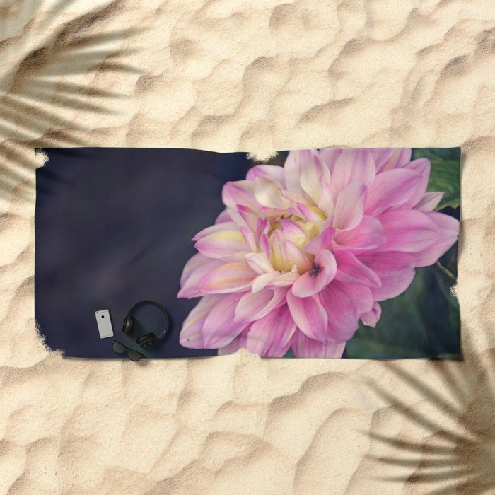 Pink sweet dahlia Beach Towel