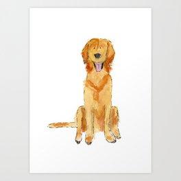 Golden Retriver Art Print
