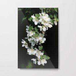 White Flower Cascade Metal Print