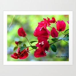 Ruby Blooms Art Print