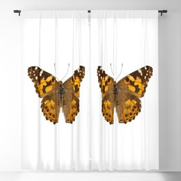 """Butterfly species Vanessa cardui """"Painted Lady"""" Blackout Curtain"""