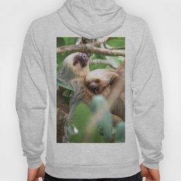 Yawning Baby Sloth - Cahuita Costa Rica Hoody