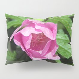 Musk Mallow - Pretty Pink Flower Pillow Sham
