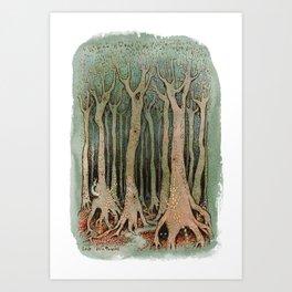 Tall Woods, Colour Art Print