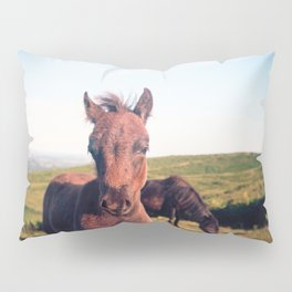 Dartmoor Pony Portrait (2) Pillow Sham