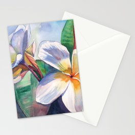 Tropical Plumeria Flowers Stationery Cards
