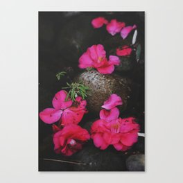 Lovesong Canvas Print